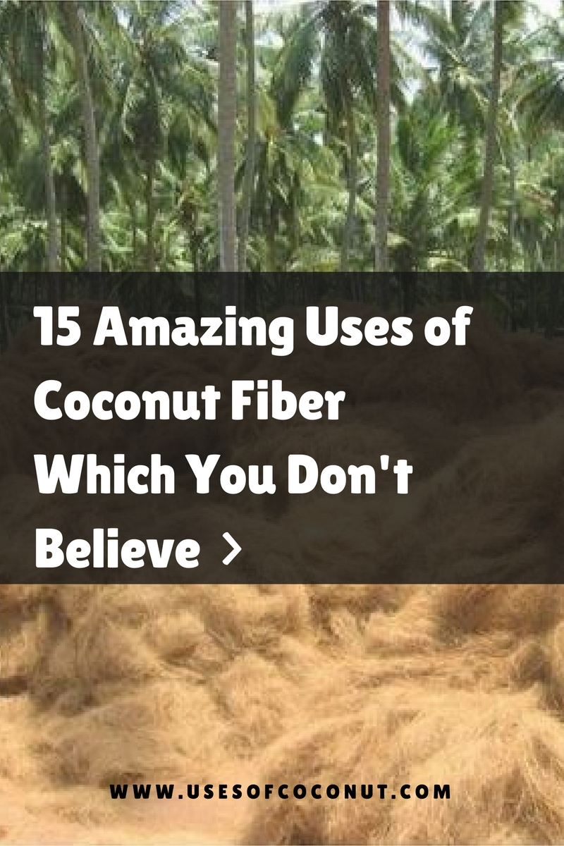 15 Amazing Uses Of Coconut Fibre