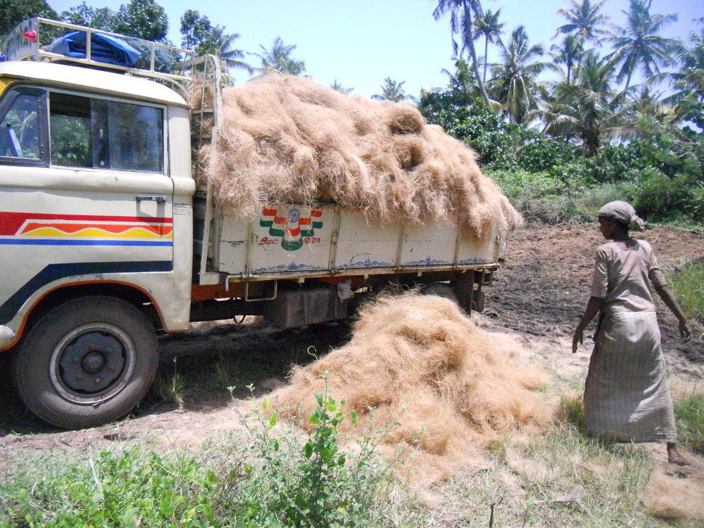 Coconut Fiber Uses
